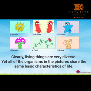 Kids Eductional Science Video Defining Life